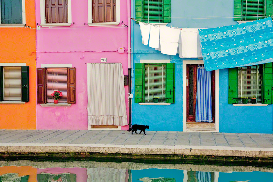 burano-italy-black-cat-colorful-houses