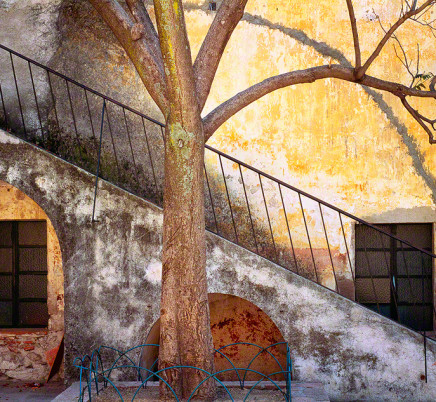 queretaro-mexico-courtyard-stairs-tree