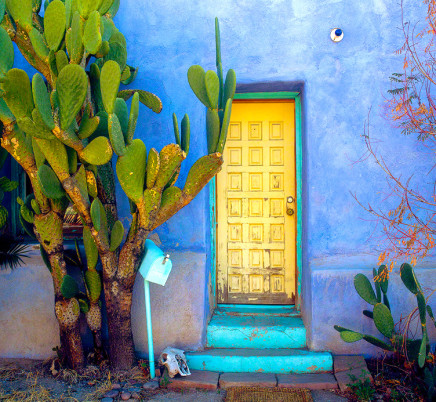 tucson-arizona-barrio-house-cactus-664