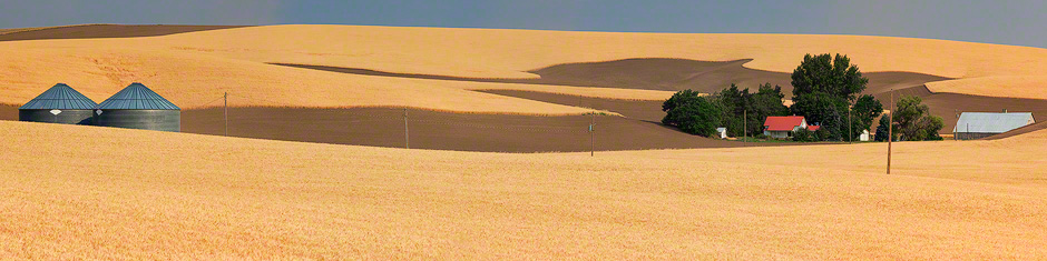palouse-washington-wheat-fields-panorama