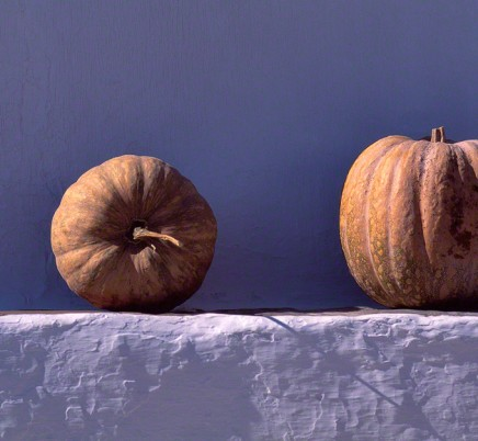 pumpkins-portugal