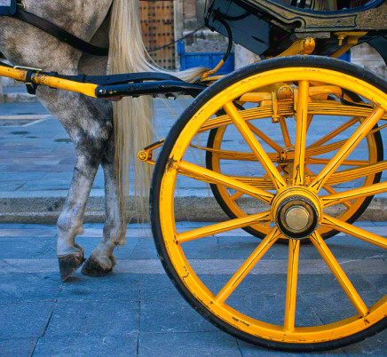 seville-spain-wagon-horse-wheel