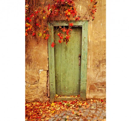 green-door-fall-leaves-prague-czech-republic